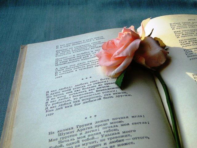 Анализ стихотворения Пушкина цветок